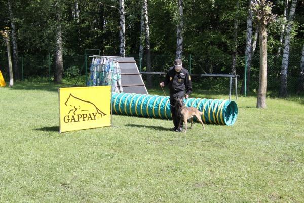 v rámci ukázek bylo představeno všech pět služebních psů MP Havířov