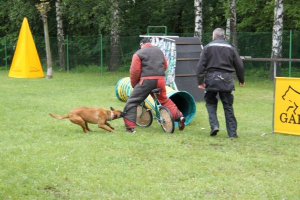 ...například ze zadržení zloděje kola