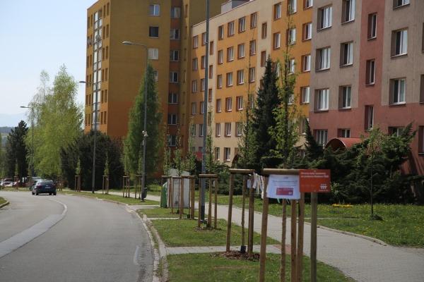 Slavnostní otevření stromové aleje na ulici M. Pujmanové